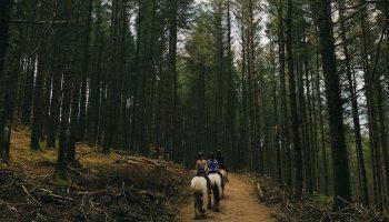 trail ride cowgirl magazine