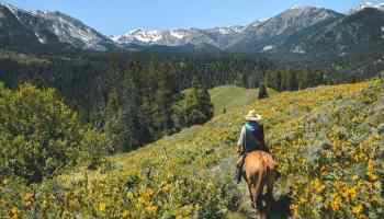 trail ride views cowgirl magazine