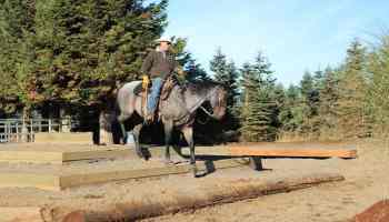 obstacles cowgirl magazine
