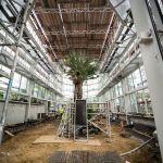Ogród Botaniczny UJ zyska wkrótce nowoczesną szklarnię