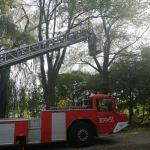 Niecodzienna interwencja strażaków i podziękowanie od naszej czytelniczki