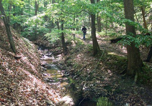 Fall Geology Hike