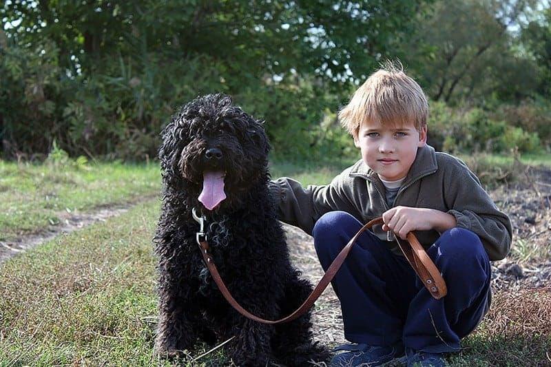 Jakie są zagrożenia związane z posiadaniem psa?