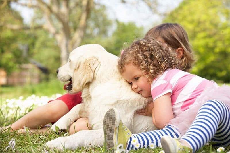 Jak przygotować dziecko na przybycie psa?
