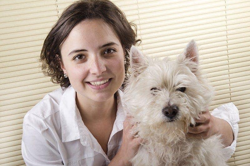 Czy warto zdecydować się na West Highland White Terriera?