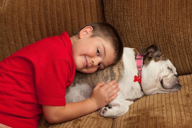 Zespół oddechowy psów krótkoczaszkowych
