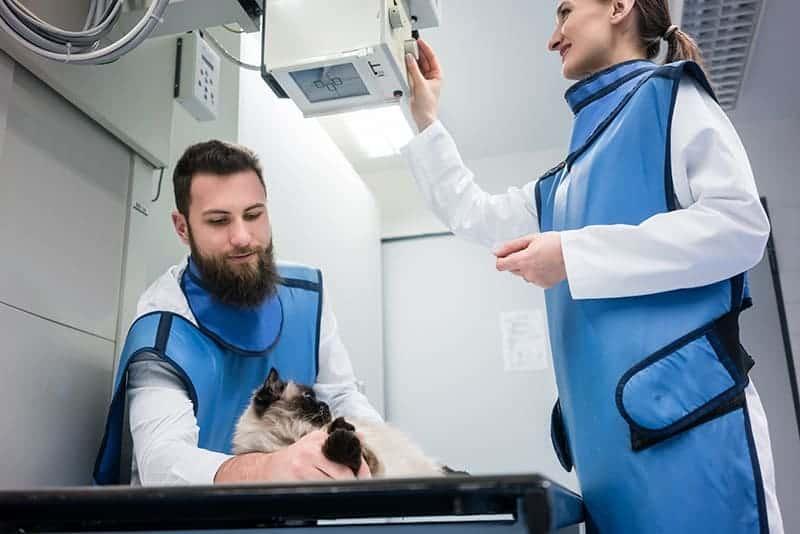 Jak powstaje promieniowanie rentgenowskie?