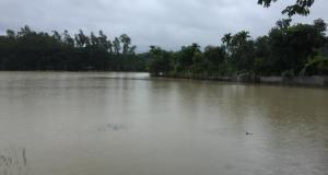 http://coxview.com/wp-content/uploads/2021/07/flood-rafiq.-28.07.2021-2.jpg