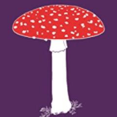 Fungipedia book cover