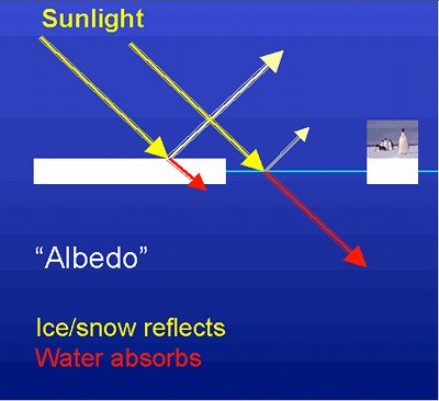 Albedo effect