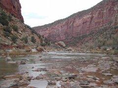 Dolores River Canyon near Paradox