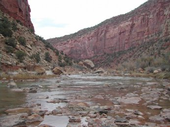Dolores River Canyon near Paradox