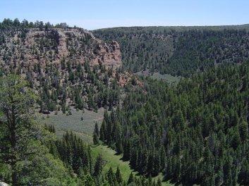 Uncompahgre Plateau