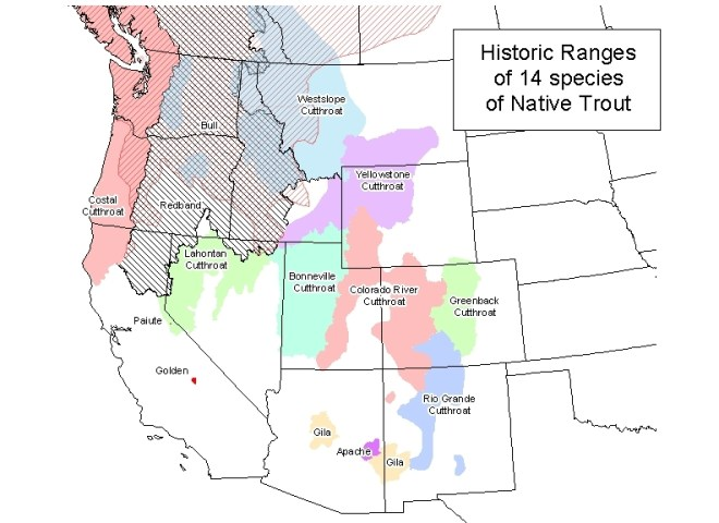 Cutthroat trout historic range via Western Trout