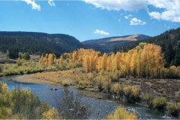 Rio Grande River near South Fork via Division of Water Resources