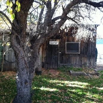The Quillen back yard -- Salida