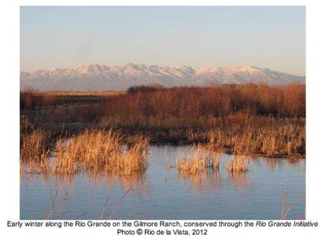 Early winter along the Rio Grande on the Gilmore Ranch via the Rio Grande Initiative