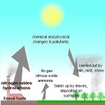 Nitrogen Deposition via Knight Science Journalism