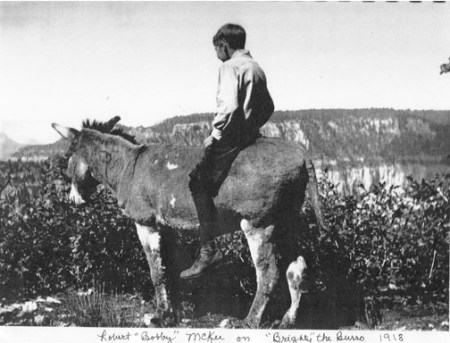 Brighty the pancake-loving donkey:  Bobby McKee rides his trusty partner, Brighty, while fetching water for residents at the Wylie Way camp in the Grand Canyon in 1918. (Photo courtesy of Marth Krueger)