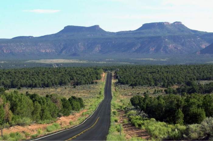 The road to Bears Ears via the Salt Lake Tribune.