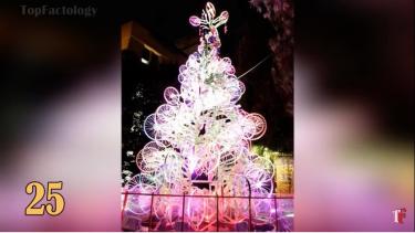 bicyclechristmastrees2