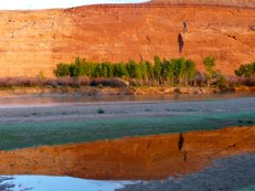 Low water on the Colorado River near Westwater. Photo: Brent Gardner-Smith/Aspen Journalism