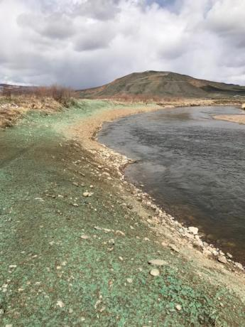 Restoration work along the Colorado River reestablished a riverbank more conducive to irrigation access. (Source: Paul Bruchez)