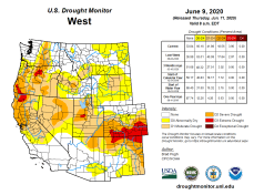 West Drought Monitor June 9, 2020.