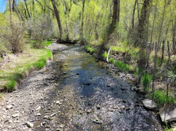 Yampa River flows below Stafford Ditch May 2021. Photo credit: Scott Hummer