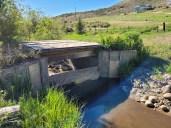 Wheeler Creek Ditch 6 & 7 diversion check June 2021. Photo credit: Scott Hummer