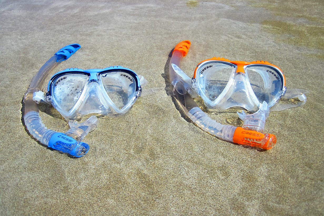 Cozumel My Cozumel snorkeling