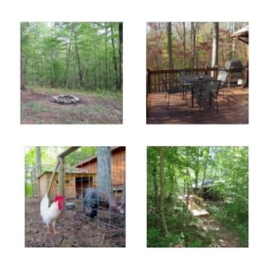 Cozy Hideaway Outdoor Features. Large furnished deck with gas grill, covered front porch, firepit hiking trails and assorted animals.