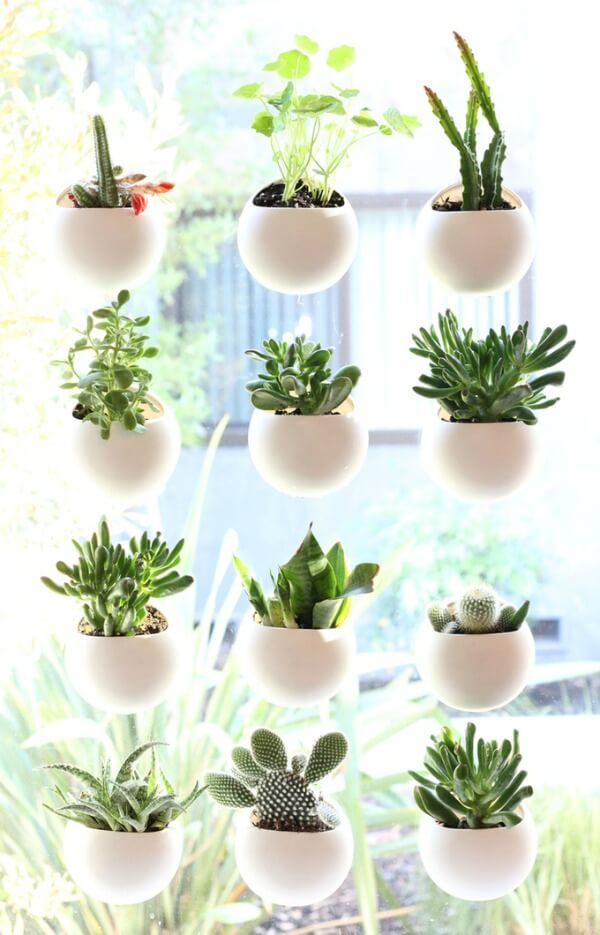 Hanging Window Plant Shelves