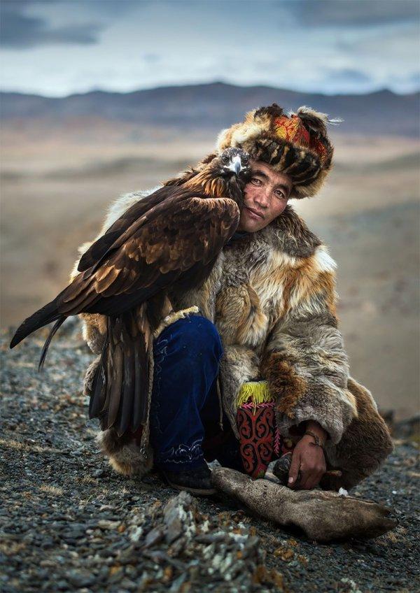 Монгольские охотники с беркутами: потрясающая связь между ...