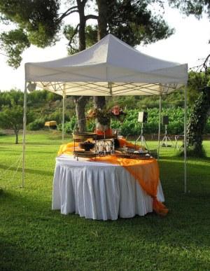 Amazing Outdoor Weddings and Events in Colorado