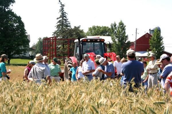 production cornell small farms program - HD3456×2304