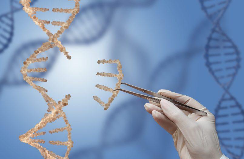 Expérience embryons humains tourne au fiasco