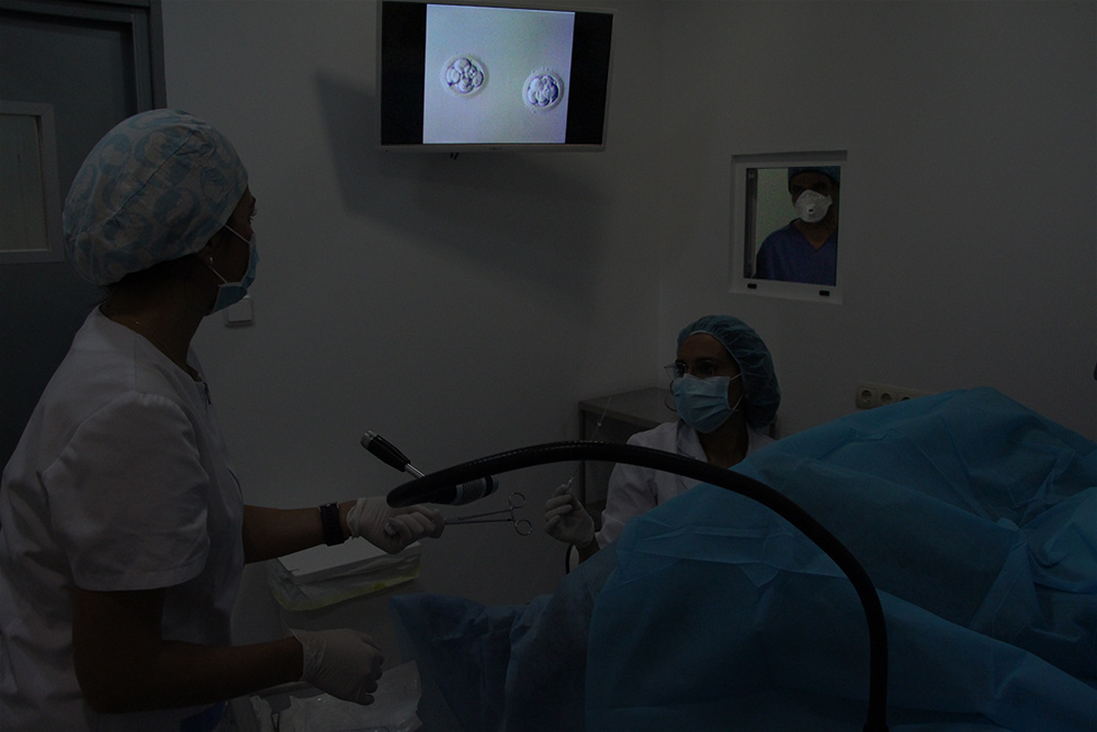 Fecundación in vitro (FIV)