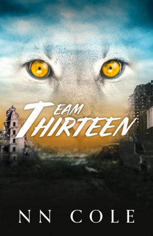 TeamThirteen_Cover_Web