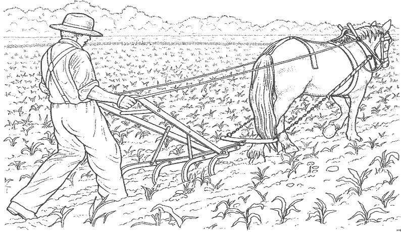 cultivateur