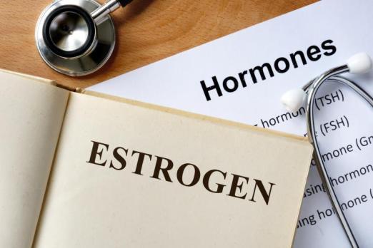 Image result for estrogen hormone