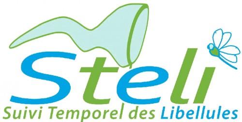 Logo-STELI