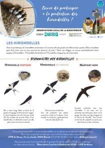 OLB_affiche_hirondelles-compatge_20210520