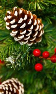 20191211 - Décoration de Noël @ Petits d'Homme | Guéret | Nouvelle-Aquitaine | France
