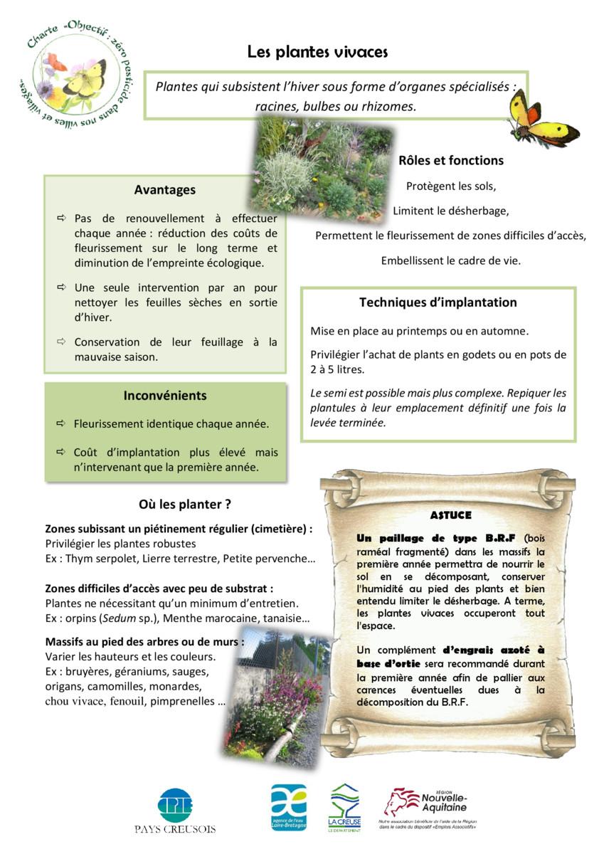 thumbnail of Fiche_plantes_vivaces_CPIE