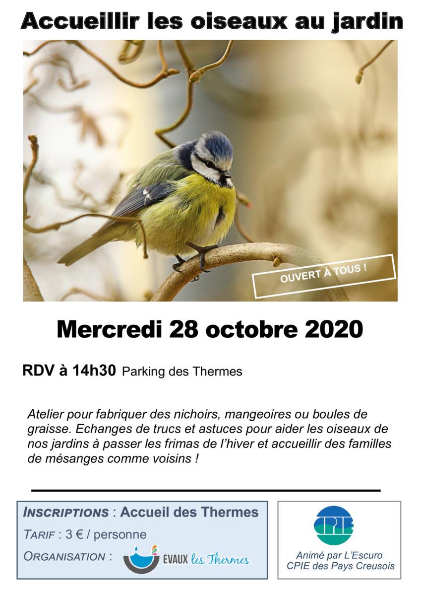 thumbnail of Oiseaux_28oct