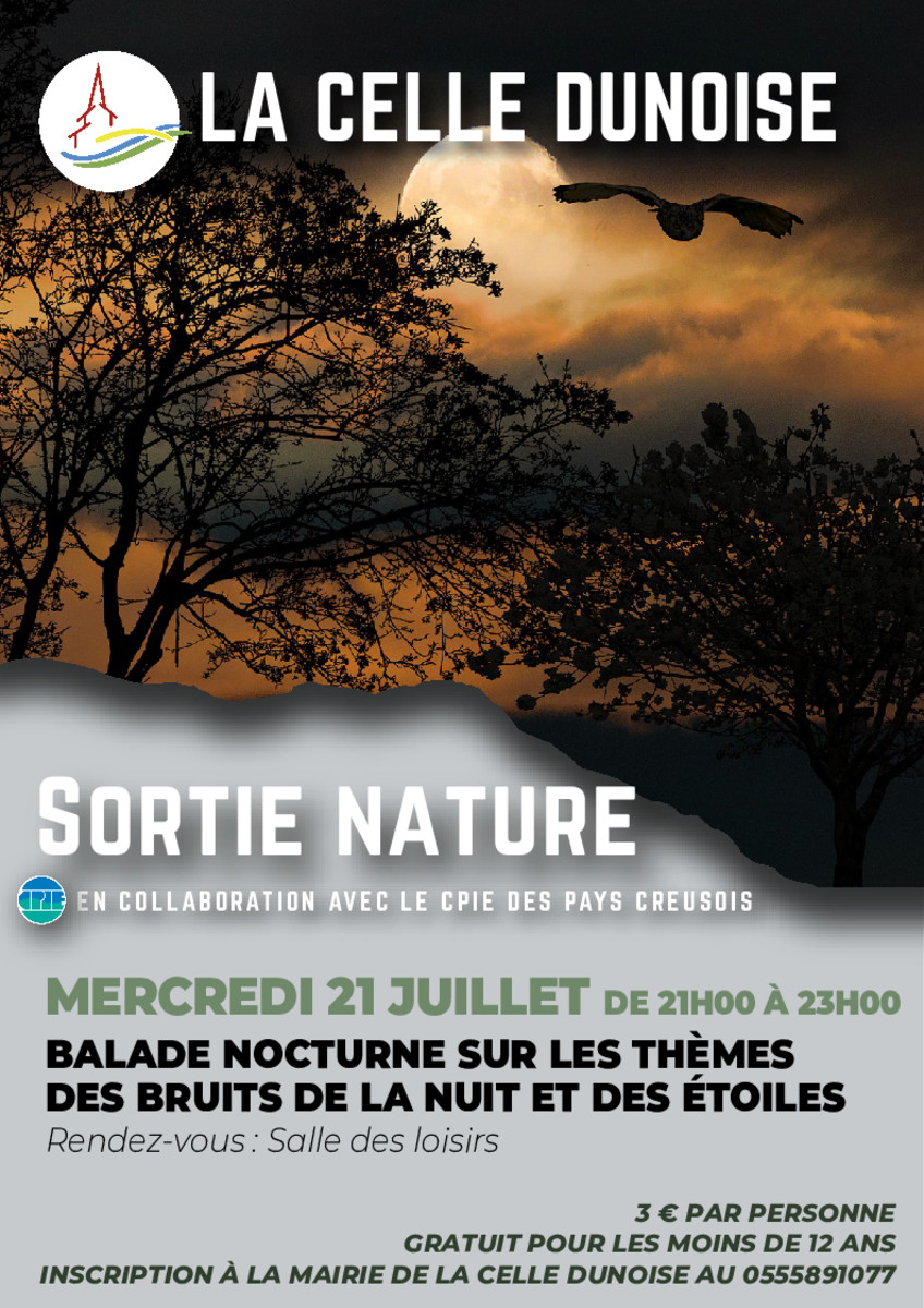 thumbnail of Flyer ballade nocturne