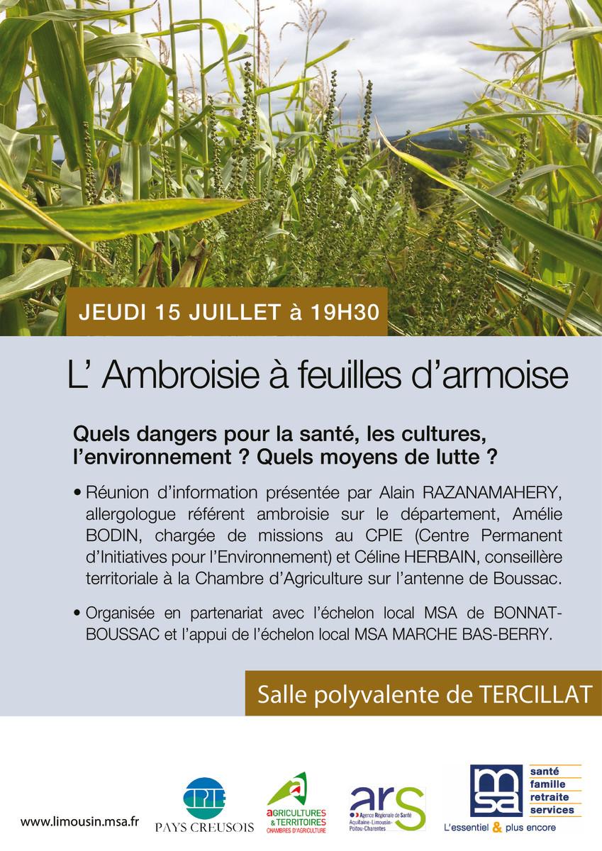 thumbnail of affiche ambroisie TERCILLAT