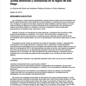 Resumen: Informe sobre la Representación Comunitaria (2018)