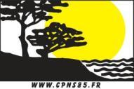 Logo CPNS